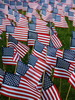 Veterans honored through annual ceremony, flag garden