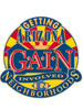 Plan a Neighborhood Event for Goodyear Getting Arizona Involved in Neighborhoods Day (G.A.I.N.) - 11/1/14